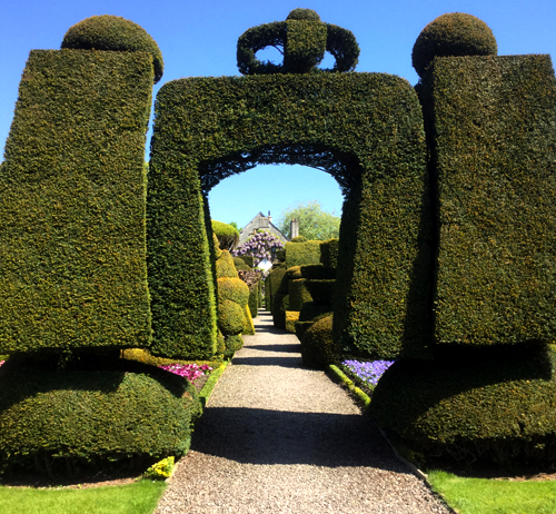 Hedge, Levens Hall